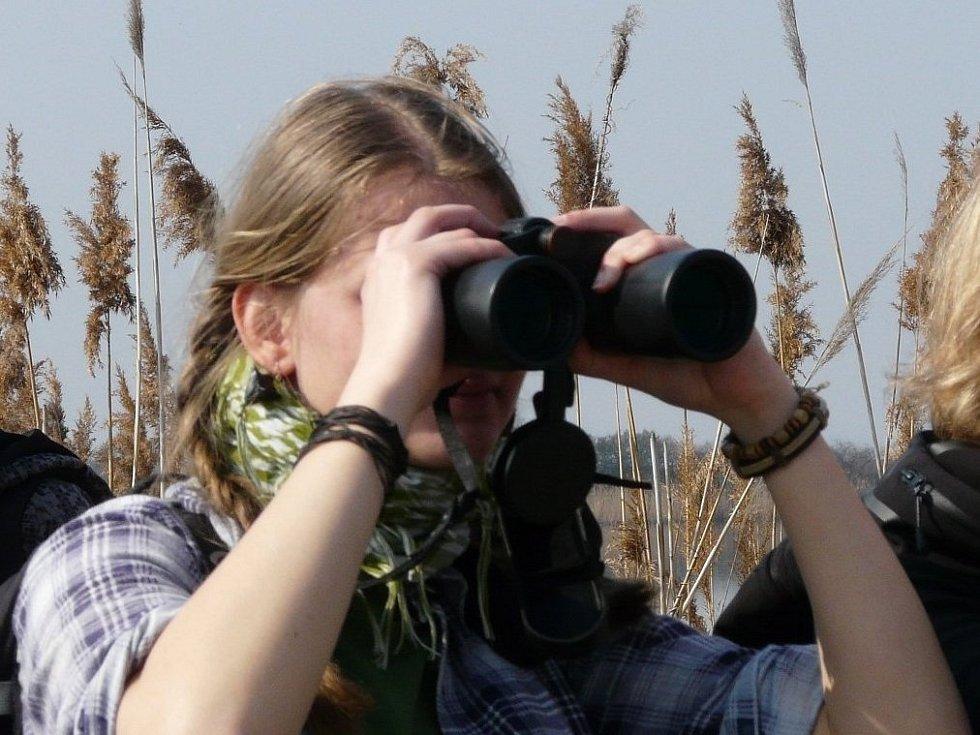 Pozorování ptactva. Ilustrační foto.