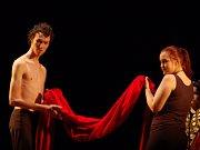 Herci ze Základní umělecké školy Zlín představili adaptaci na povídku E. A. Poa - Červená smrt v rámci pětadvacátého ročníku Divadelního Kojetína.