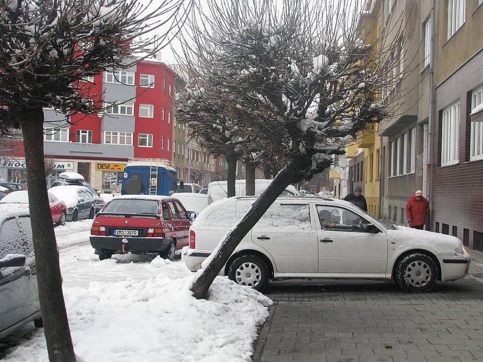 Tíha sněhu vychýlila i stromy v Přerově
