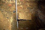 Torzo vynášecího pasu, odkrytého ve zjišťovací sondě, položené vjižním koutě místnosti vpřízemí dřevohostického zámku.