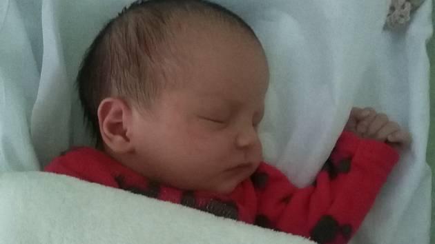 Monika Mucová, Přerov, narozena 7. ledna 2019  v Přerově, míra 47 cm, váha 2950 g