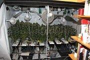 Drogy, které zadrželi kriminalisté při domovních prohlídkách na Přerovsku. Jednání pachatelů je podle nich stále sofistikovanější. Mezi drogami už nefigurují jen pervitin a marihuana, ale také kokain, hašiš nebo LSD.