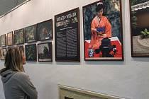 Muzejní a japonská noc v Přerově