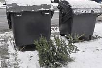 U kontejnerů už se objevily první vánoční stromky. Svátky jsou pryč.