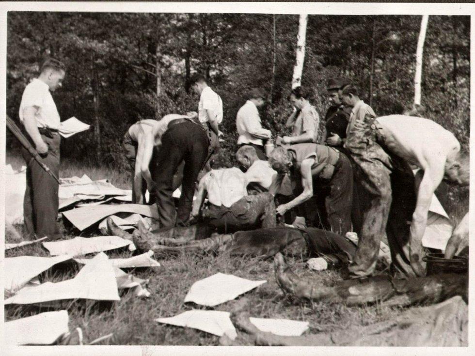 Exhumace popravených osob na střelnici v Olomouci-Lazcích 13. 5. 1945