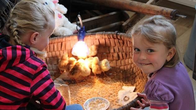 Velikonoční výstava v Býškovicích