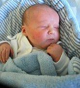Kubík Karas, Drahotuše, narozen dne 17. října 2012 v Přerově, míra: 51 cm, váha: 3 470 g