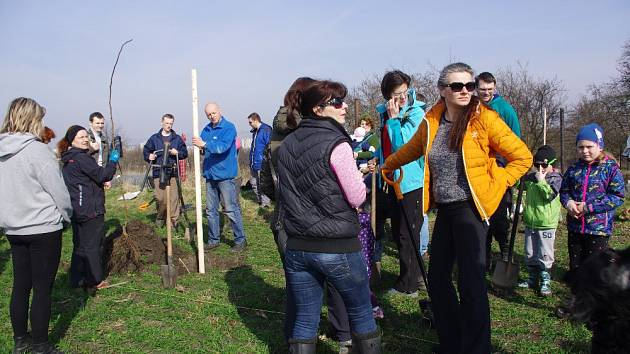 Celkem 55 ovocných stromů a sedmdesát keřů vysadili v sobotu 25. března Přerované na poli za Hostýnskou ulicí.