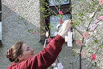 Lidé mohli v sobotu přijít do areálu Ornitologické stanice v Přerově a podle japonské tradice zavěsit na symbolickou sakuru, kterou ve skutečnosti představovala nazdobená větev osiky, svá přání