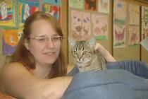 Propagační výstava koček v Lipníku