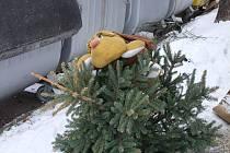 Vánoční stromky u kontejnerů v Přerově