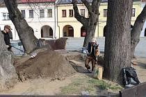 Archeologové zahájili výzkum na Horním náměstí v Přerově - v místech, kde kdysi stála studna.