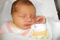 Viktorie Uhýrková, Ústí, narozena dne 5. února 2016 v Přerově, míra: 52 cm, váha: 3866 g