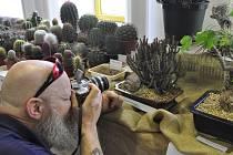 Tradiční výstava kaktusů a sukulentů v Přerově