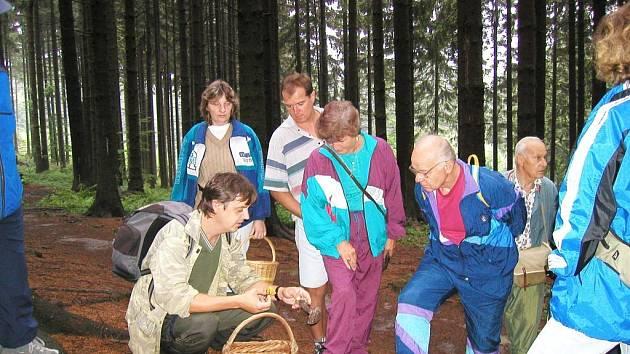 Houbaření má na Přerovsku řadu příznivců. Ti však letos zatím přicházejí zkrátka.