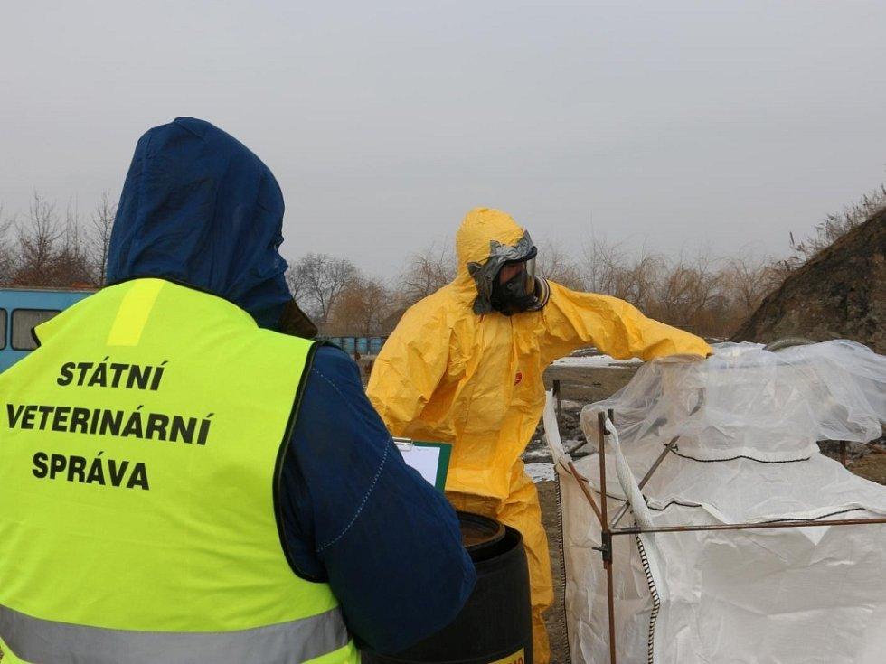 S likvidací drůbeže v Lověšicích u Přerova, kde se v chovu vyskytla ptačí chřipka, pomáhaly jednotky hasičů z Přerova, Olomouce a Prostějova.
