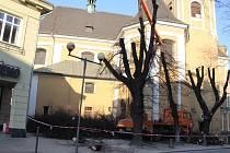 Prořezávka stromů vedle kostela sv. Vavřince v Přerově