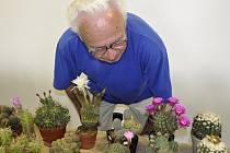 Výstava kaktusů a sukulentů na přerovském výstavišti