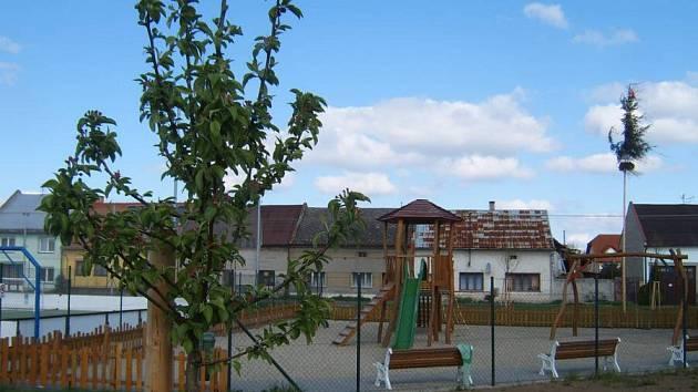 Nové stromy v Citově