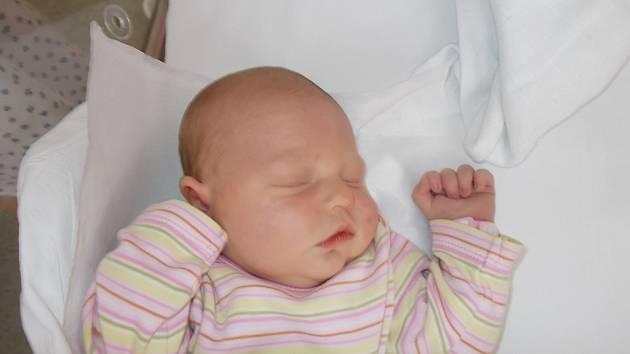 Stella Drexlerová, Hranice, narozena 8. dubna 2016 v Přerově, míra: 52 cm, váha: 3876 g