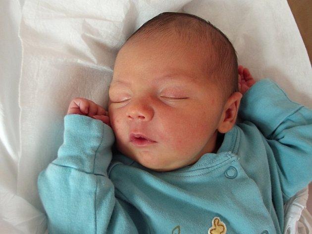 Viktorie Dokoupilová, Přerov, narozena dne 26. dubna 2014 v Přerově, míra: 50 cm, váha: 3 276 g
