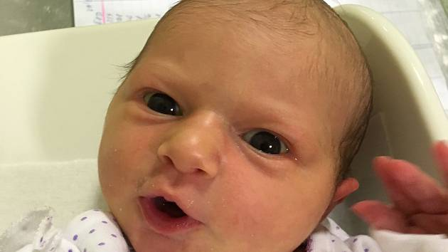 Marie Černá, Dřevohostice, narozena 31. srpna v Přerově, míra 48 cm, váha 3340 g a mírou 48 cm.