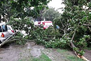 Hasiči vyjížděli v pátek odpoledne i na ulici Budovatelů, kde stromy popadaly na auta.