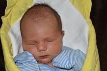 David Holý, Přerov, narozen dne 28. února 2019 v Přerově, míra 51cm, váha 3706 g