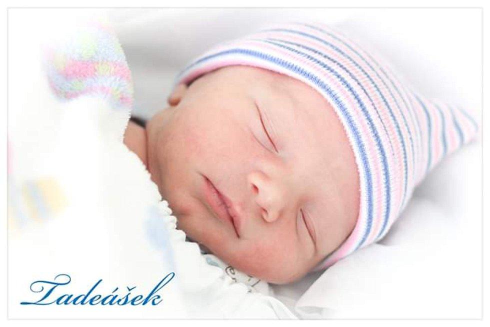 Tadeáš Malík, Hranice, narozen 27. února 2020, míra 47 cm, váha 3068 g