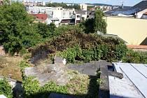 Požár břečťanu u městských hradeb v Přerově