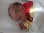 Leontýna Nevřivová, Přerov, narozena dne 16. června vPřerově, míra 49 cm, váha 3164 g