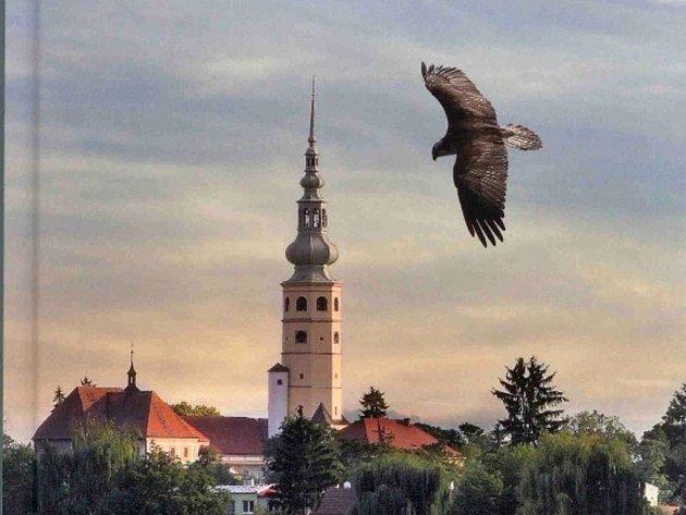 Kniha Ptactvo Tovačovska - foto z přebalu