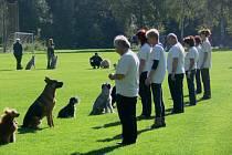 Mistrovství republiky ve cvičení záchranných psů v Tovačově.