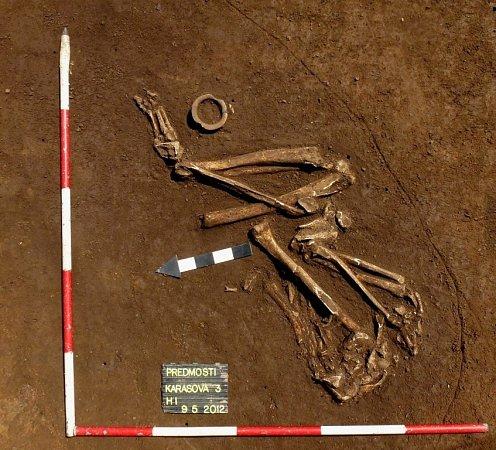 Unikátní nález učinili přerovští archeologové vPředmostí uPřerova. Majitelé rodinného domu našli na zahradě při výkopových pracích lidskou kostru ve skrčené poloze, která je typická pro pohřbívání vobdobí starší doby bronzové.