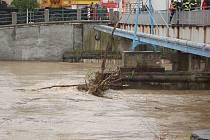 Hasiči ve spolupráci s armádou čistí v Přerově koryto řeky Bečvy od naplavenin.