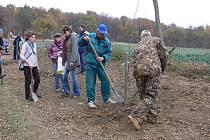 Dřevohostičtí obyvatelé vysázeli k lesu alej se sto sedmdesáti mladými stromky.