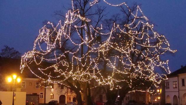 Rozsvícené stromy u zámku