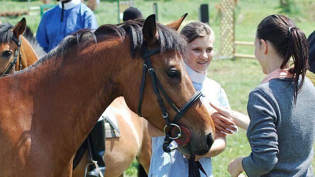 Den koní v Radkově Lhotě