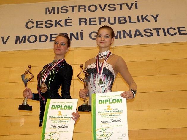 Z mistrovství republiky moderních gymnastek v Brně
