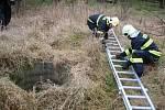 Záchrana muže a psa ze studny v Pavlovicích u Přerova