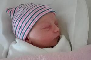 Magdaléna Orsagová, Přerov, narozena 10. prosince  2018 v Přerově, míra 47cm, váha: 2878g