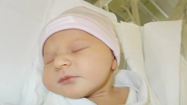 Julie Prášilová, Svésedlice, okres Olomouc, narozena dne 26. října 2015 v Přerově, míra: 49 cm, váha: 3420 g