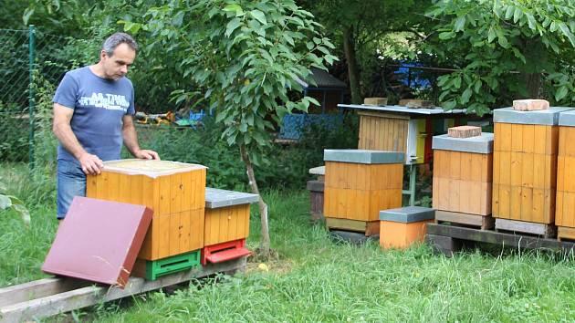 Petr Navařík, majitel Včelařství U kapličky v Dobrčicích vlastní osmdesát včelstev.