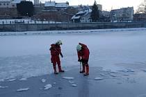 Přerovští dobrovolní hasiči měřili sílu ledu na řece Bečvě, ale i na městském rybníce a na Laguně.