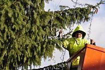Zdobení vánočního stromu na náměstí TGM v Přerově