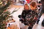 Vánoční výstava v Horním Újezdu