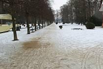 Cesty v přerovském parku Michalov, 19. února 2021