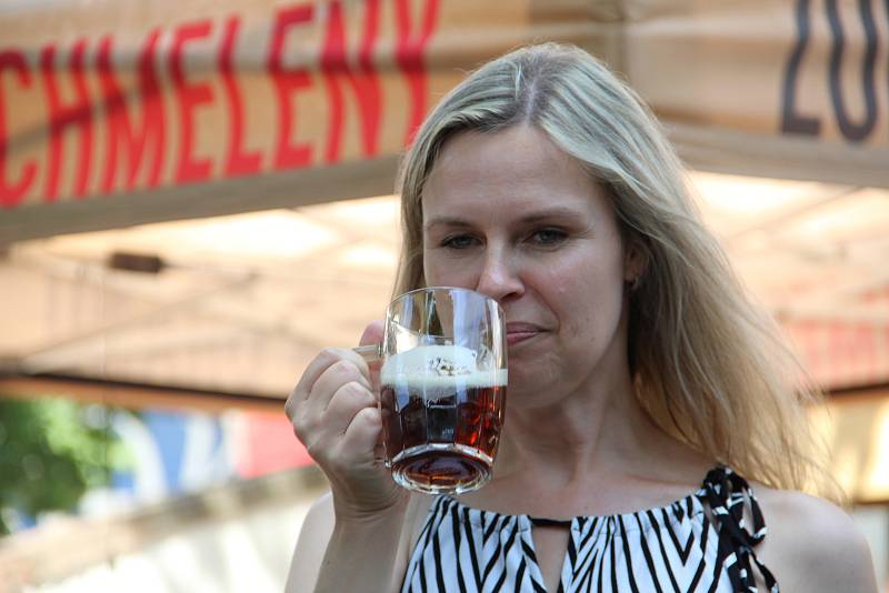 Přerovský pivovar Zubr přichází na léto s novým speciálem - polotmavou jednáctkou.