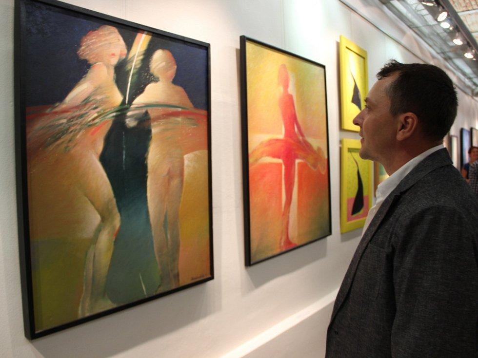 Výstava díla Petra Markulčeka v přerovské galerii.