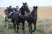Jezdci a chovatelé koní z okolí se v sobotu setkali na tradiční Hubertově jízdě v Beňově, aby společně ukončili sezonu.